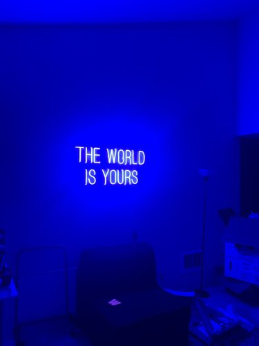 THE WORLD IS YOURS Neon LED Sign photo review